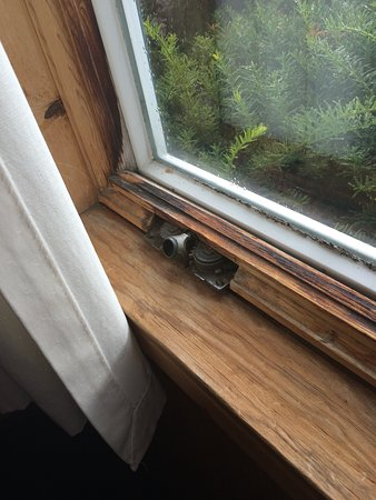 Birds Nest Motel: Missing - broken window crank.