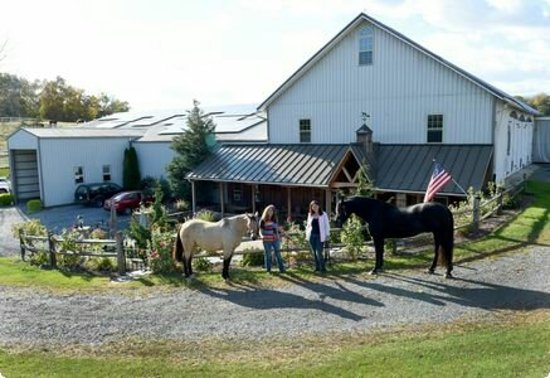 Robesonia, PA: Was given a farm tour, Pony Show, and a memorable day...