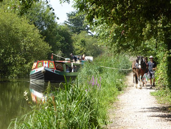 Kennet & Avon Canal: Near Hungerford
