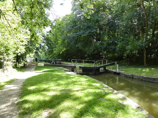 Kennet & Avon Canal: Near Newbury