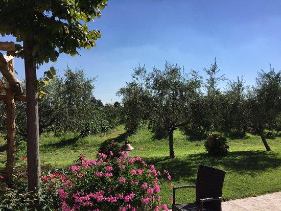 Риволи-Веронезе, Италия: photo3.jpg