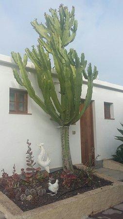 Hotel Rural El Navio: 20160809_091609_large.jpg