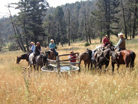 Martinsdale, MT: Watering the horses on a mountain top ride.