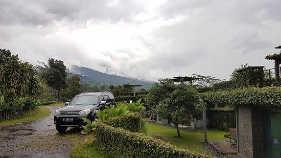 Tea Garden Resort Bandung: 20160723_163233_large.jpg