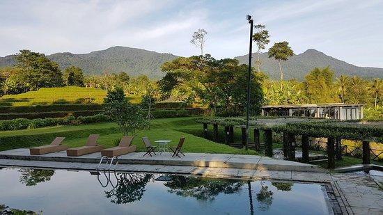 Tea Garden Resort Bandung : 20160724_070454_large.jpg