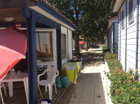 Parque de campismo Orbitur Ilha de Armona: photo1.jpg