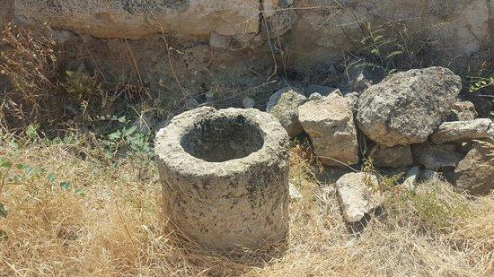 Soli Ruinen: Soli Ruïnes