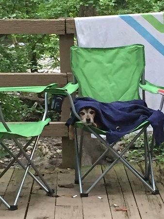 Lazy Daze Campground: photo5.jpg