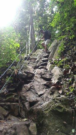 Naranjal, الإكوادور: Vida en la naturaleza.