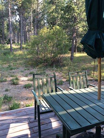 Tahoma, CA: Great backyard views!