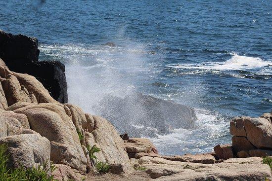 Kennebunkport, Maine: Ocean Ave views