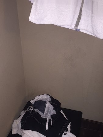 Kenner, Λουιζιάνα: Room 214, filthy, toilet issues, two roaches in bathroom, pool green and cloudy, peeling wallpap