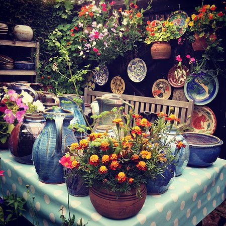 Bowls, plates and jugs amongst the flowers growing the in courtyard of Crail Pottery