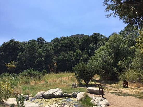 Oak Glen, CA: Heaven for you and your furry friends!