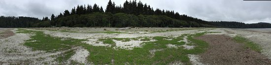 Pachena Bay Campground: photo1.jpg
