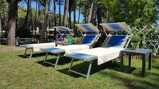 Hotel Colorado: relax in pineta