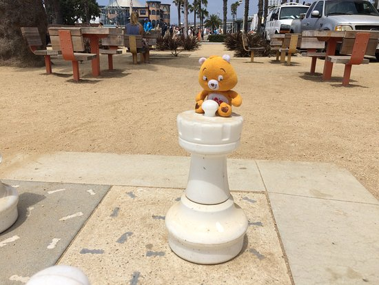 International Chess Park: amigo bear loves to travel with us.