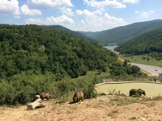 Bear Sanctuary Prishtina
