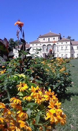 Fiori Torino.Fiori E Villa Foto Di Parco Della Tesoriera Torino Tripadvisor