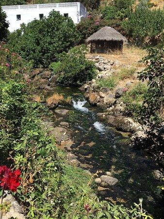 Molino del Santo: photo2.jpg