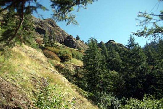 Сисайд, Орегон: Breaking out of the tree line
