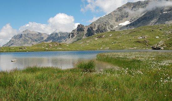 Sils im Engadin, Suiza: Einer der typischen Seen entlang der Wanderung
