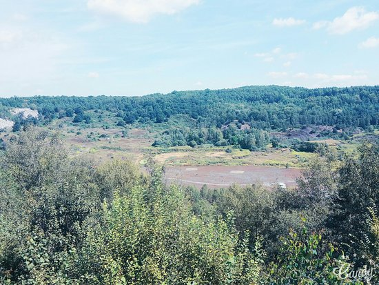 Messel Pit Fossil Site