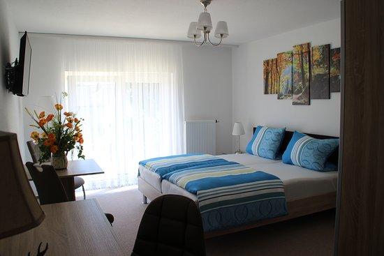 Bad Rappenau, Alemania: Zimmer mit Terrasse