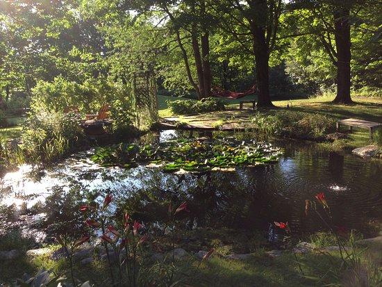 Warren, VT: Pond on grounds