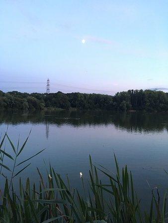 Theale, UK: Take a stroll around Hose Hill lake