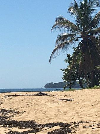 Punta Uva, كوستاريكا: The beach!