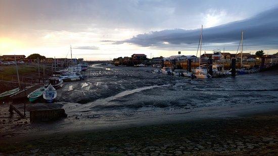 Le Teich, Frankreich: porto di Larros