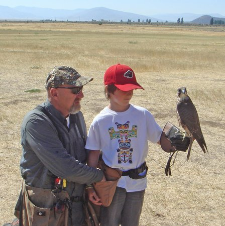 Portola, Καλιφόρνια: Jim Tigan sharing three decades of raptor experience with Cooper.