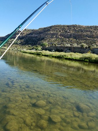 Navajo Dam, NM: 20160812_091603_large.jpg