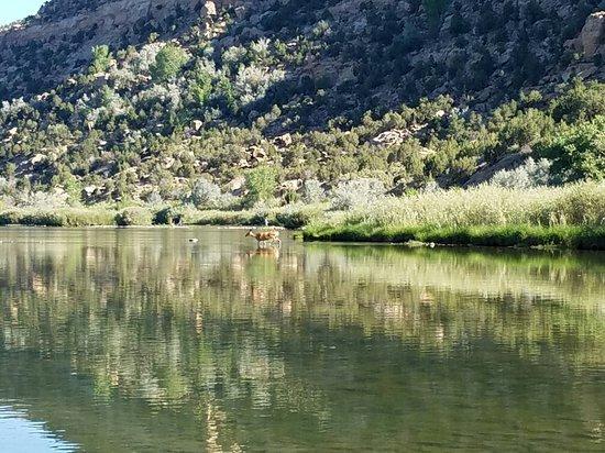 Navajo Dam, NM: 20160812_091317_large.jpg
