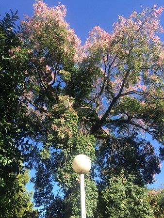 Jardin de ayora valencia spain updated 2018 top tips for Jardin de ayora
