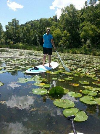 Fish Lake Dog Park Maple Grove