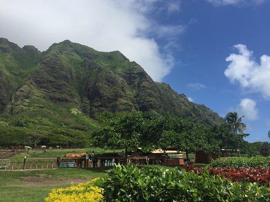 Kaneohe, Hawaï: photo1.jpg