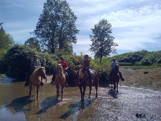 Pitt Meadows, Canadá: Leghorn Ranch