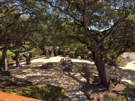 Matanzas Creek Winery: Picnic area