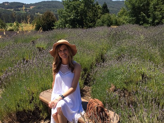Matanzas Creek Winery: Enjoying the view