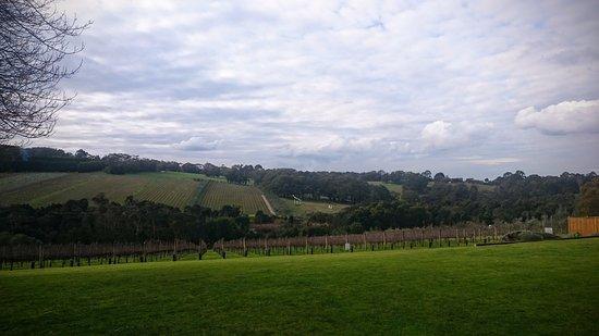 Eltham, Αυστραλία: View from Tuck's Ridge Cellar Door