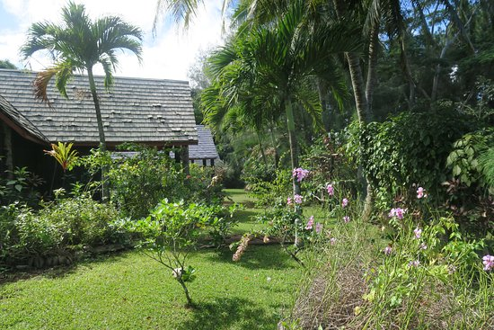 Atiu, Islas Cook: View of garden and villas
