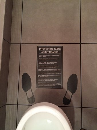 Had a laugh at all the signs in the washroom