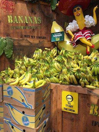 Newington, CT: Bananen