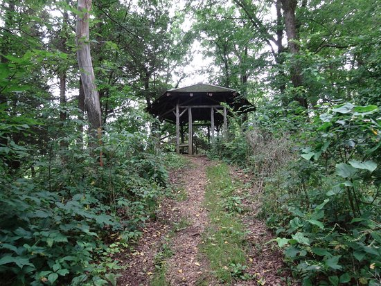 Spring Green, WI: Pavilion - this give you an idea of the steepness of the trail. It's short, but very steep.