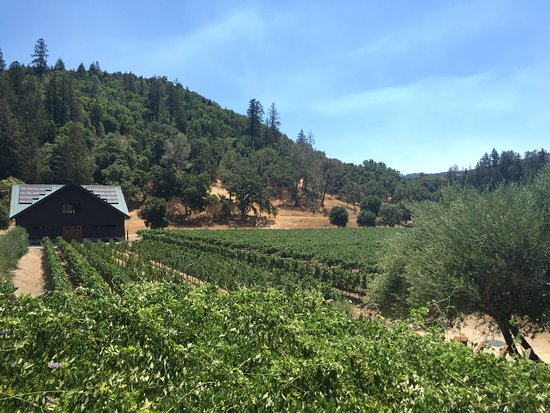 Best Napa Valley Wine Tour Tripadvisor