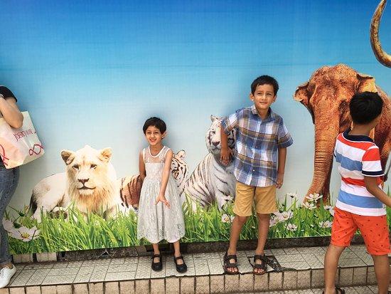 Guangzhou Zoo: photo2.jpg