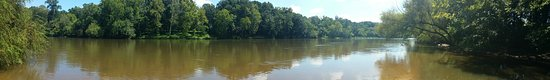 Lillington, NC: 20160813_114600_large.jpg