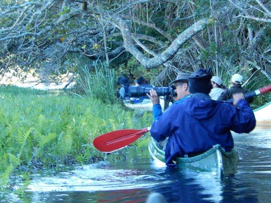 Maputaland Coastal Forest Reserve, Sudáfrica: Canoe trip